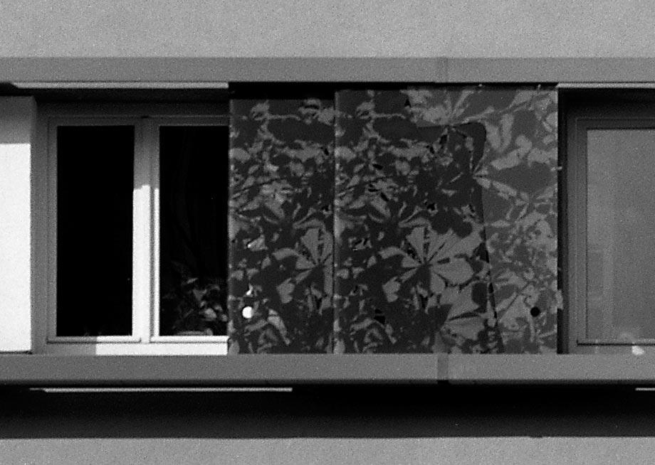 Gabelsbergerstraße Fenster